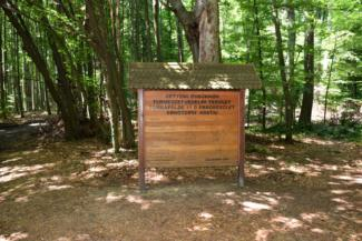 Vétyemi ősbükkös információs táblája