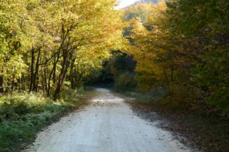 A Keszthelyi-hegységet átszelő Büdöskúti út