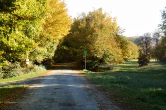 táblák jelzik a Bakonyerdő kerékpáros túra útvonalát a Keszthelyi-hegységben