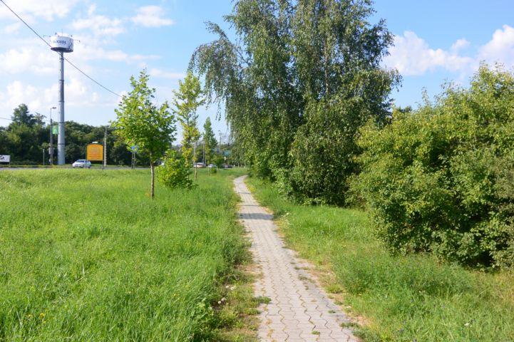 Egér út melletti bicikliút