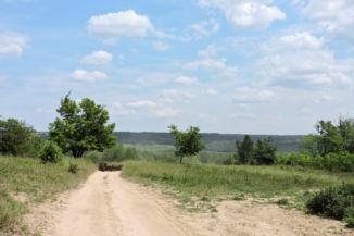 kiérve az erdőből tovább követjük a földutat