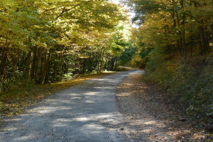 a Büdöskúti esőbeállótól Balatongyörök felé vezető út a Keszthelyi-hegységben